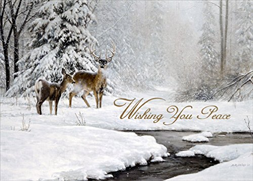 Dear and Stream in Winter - LPG Nature Box of 18 Christmas Cards (Card Winter Scenes Christmas)