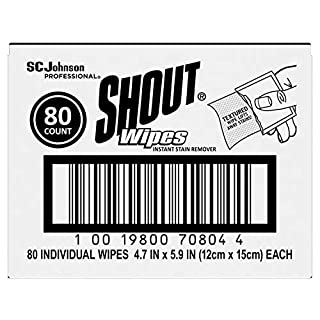 Shout Stain Treater Individual Wipes, 80 count