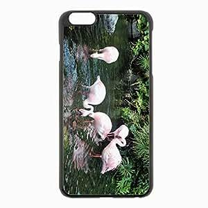 iPhone 6 Plus Black Hardshell Case 5.5inch - flamingos birds river drink plants Desin Images Protector Back Cover