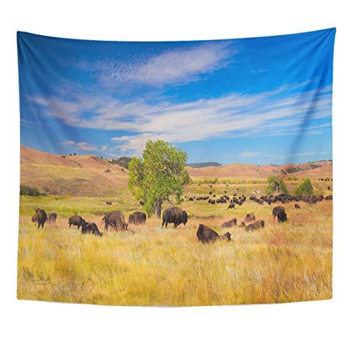 Semtomn Tapestry Buffalo Bison on Grasslands Custer State Park South Dakota Home Decor Wall Hanging for Living Room Bedroom Dorm 60x80 ()