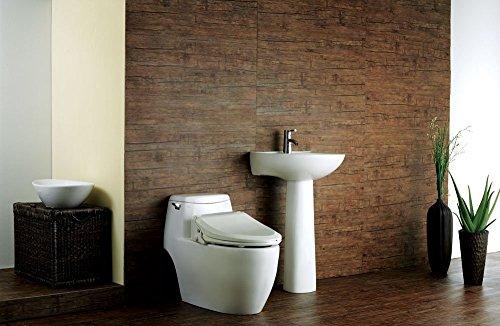 Outstanding Uspa Ub 6035R Warm Water Bidet Toilet Seat Dual Nozzle Dailytribune Chair Design For Home Dailytribuneorg