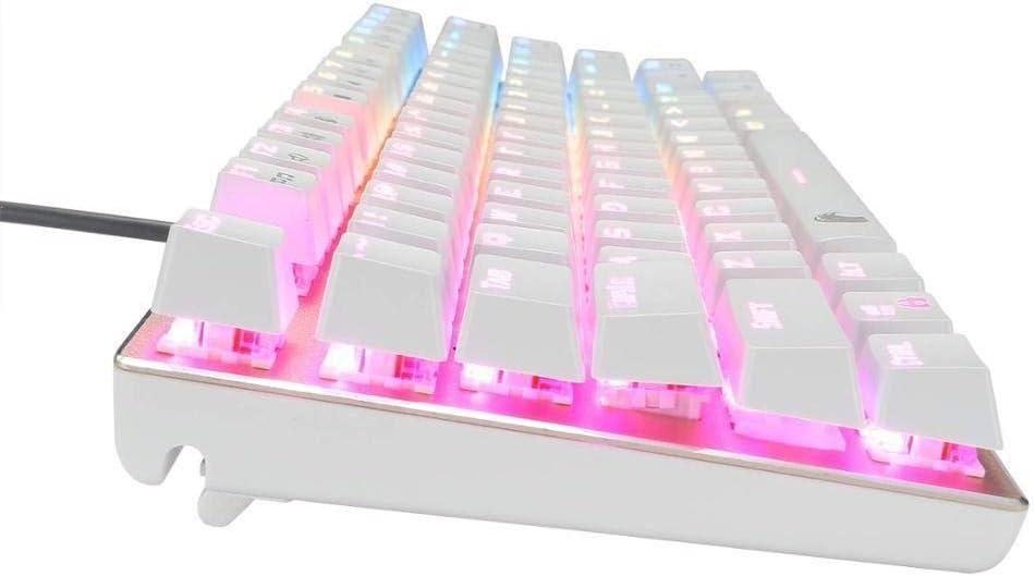 Achse K/örper : Blau Schalter, Farbe : Gold White Keyboard BMWY Mechanical Keyboard RGB Mechanical Gaming Keyboard LED BacklitWater Durable Gold Compact 81 Key Anti-ghosting for Mac PC