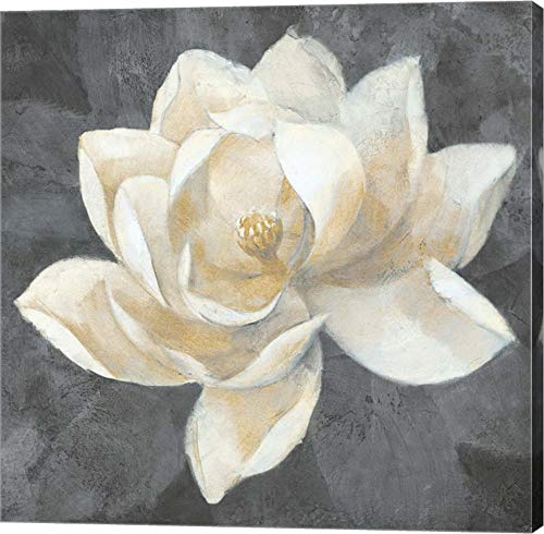 Majestic Magnolia Neutral Sq by Albena Hristova Canvas Art Wall Picture, Gallery Wrap, 28 x 28 inches