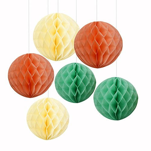 Wcaro Tissue Paper Honeycomb Balls Party Decorations Tissue Paper Flower for Birthday Parties, Baby Showers, Weddings and Nursery Decor (Set of 6), 6