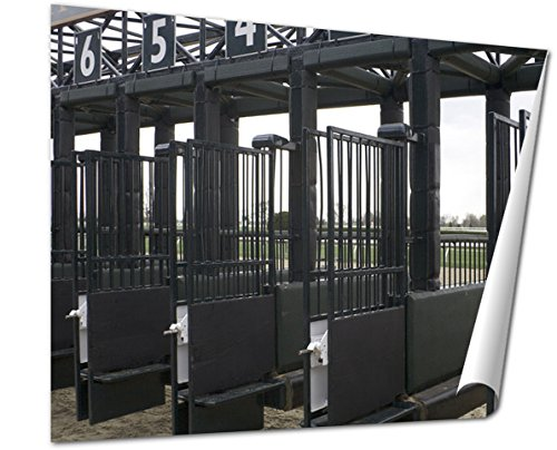 Ashley Giclee Starting Gate For A Horse Race,