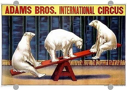 Vintage Poster Premium Acrylic Sign CGSignLab |Adams Bros International Circus 27x18