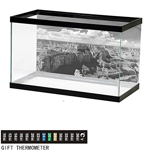 - bybyhome Fish Tank Backdrop Canyon,Nostalgic Grand Canyon,Aquarium Background,36