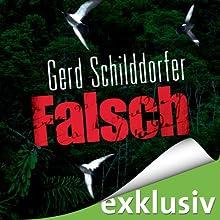 Falsch (John Finch 1) Hörbuch von Gerd Schilddorfer Gesprochen von: Wolfgang Wagner