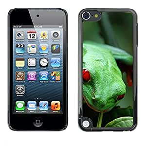 Hot Style Cell Phone PC Hard Case Cover // M00000792 Frogs Pattern // Apple iPod Touch 5 5G 5th