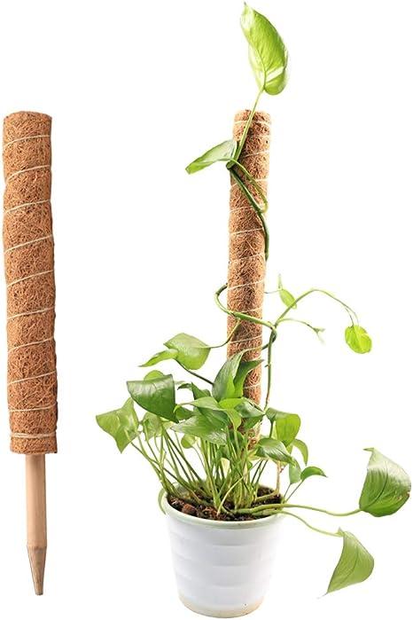 HILINE Tótem, bastón de tótem de musgo de coco, coco, coco, escalada, tótem, palo de musgo de coco, para extensión de soporte de plantas, plantas de ...
