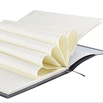 QuickZ Death Note Cuaderno y Pluma Pluma Libro Escribir Jap/ón Anime Peri/ódico Nueva 26 x 19 cm