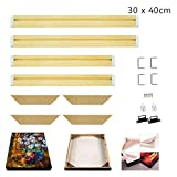 WITUSE Wood Stretcher Bars Painting Canvas Wooden Frame for Gallery Wrap Oil Painting-12''x16''/30x40cm