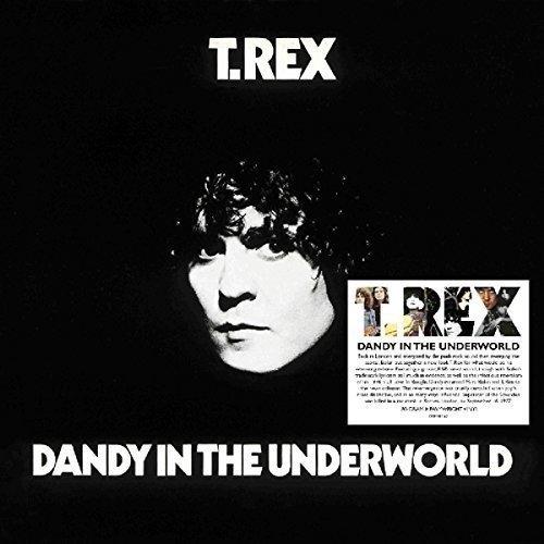 T-rex Vinyl - Dandy In The Underworld / T.Rex