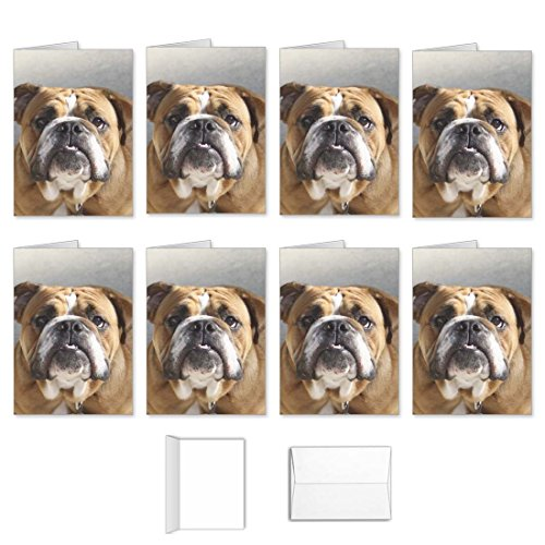 Price comparison product image Dog Note Cards - Best Set English Bulldog Greeting Cards