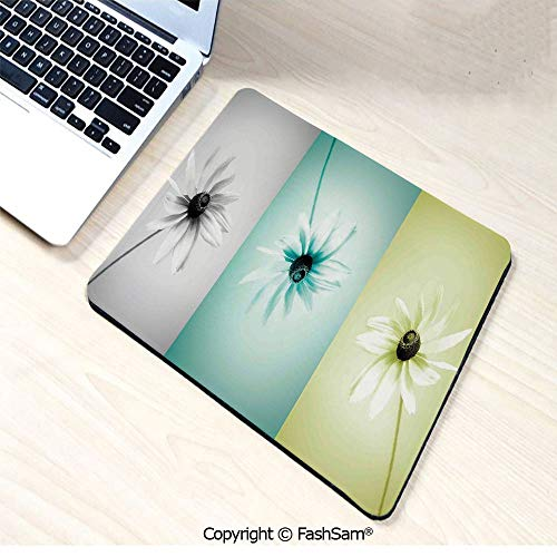 (Desk Mat Mouse Pad Daisy Flowers in Different Featured Framed Saturated Artsy Image for Office(W9.85xL11.8) )