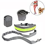 Roadwi Hands Free Dog Leash with Adjustable Waist Belt and Storage Bags, Lightweight Bungee Dog Leash for Running, Hiking, Walking and Jogging