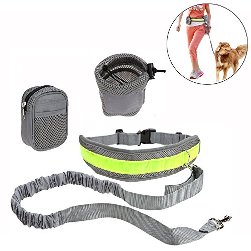Roadwi Hands Free Dog Leash with Adjustable Waist Belt and Storage Bags, Lightweight Bungee Dog Leash for Running, Hiking, Walking and Jogging by roadwi