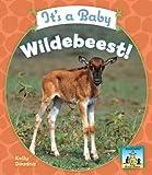 It's a Baby Wildebeest! (Sandcastle: Baby African Animals)