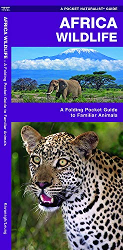 African Wildlife: A Folding Pocket Guide to Familiar Species (Pocket Naturalist Guides)