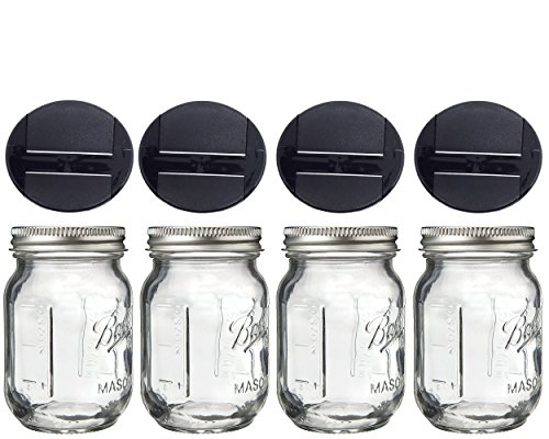 Mini Mason Spice Jar with Dispenser Lid 4oz (4, black) by Jarming Collections