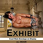 Exhibit: Cruel Male Bondage on Display | A.J. Moor