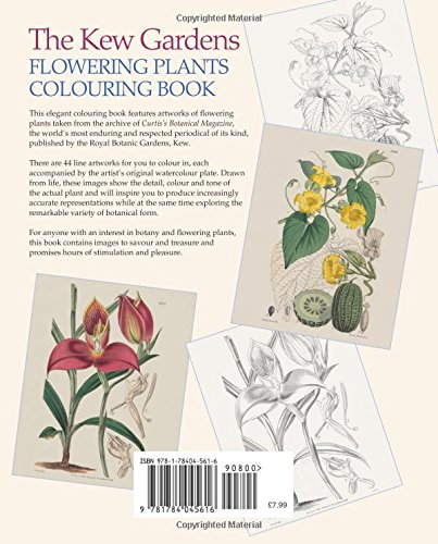 The Kew Gardens Flowering Plants Colouring Book Over 40 Beautiful Illustrations Plus Colour Guides Arcturus Publishing 9781784045616 Amazon Books