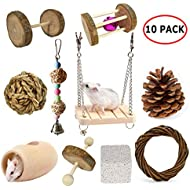 BWOGUE Hamster Chew Toys Rat Chinchilla Guinea Pig Rabbits Toys Accessories Natural Apple Wooden Dumbells Exercise Bell Roller Teeth Care Molar Toy for Birds Bunny Gerbils Pack of 10