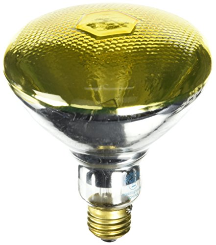 100 Watt Incandescent Flood Light Bulb in US - 4
