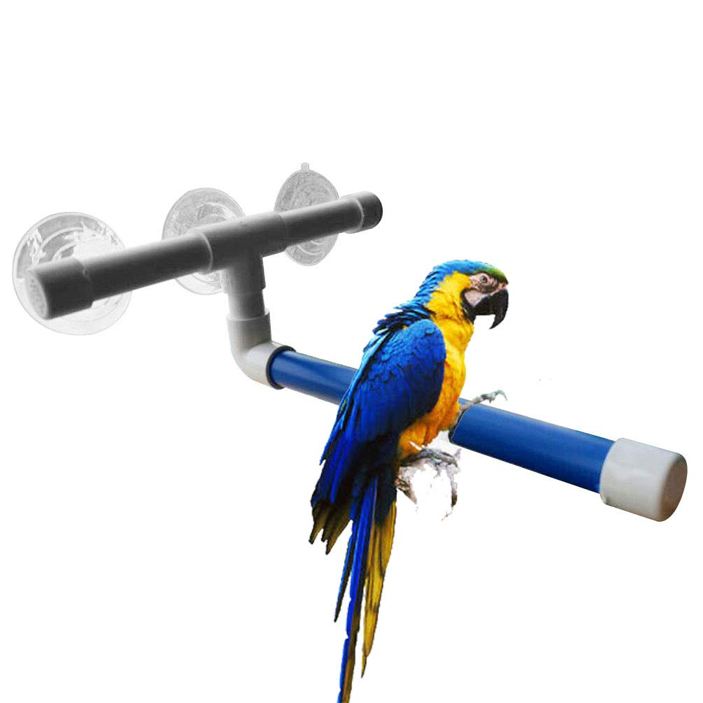 UTOPIAY Parrot Standing Bath Perches for Bird Platform Rack Suction Cup Window Shower Bird Bath Toys Frame by UTOPIAY