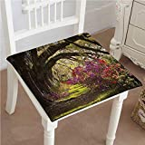 Mikihome Classic Decorative Chair pad Seat Romantic Trees Garden Time Sunbeam Scenery Brown Green...
