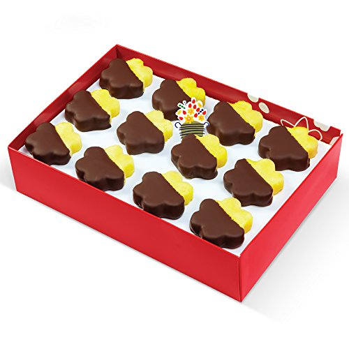 Edible Arrangements Chocolate Dipped Pineapple Daisies Box