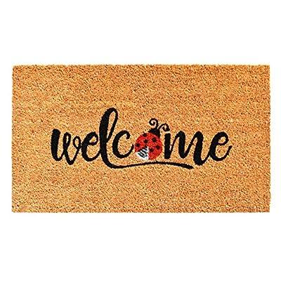 Calloway Mills AZ104891729 Welcome Ladybug Doormat, Natural/Black/Red