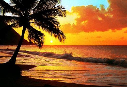 1art1 40542 Strände - Sonnenuntergang Am Pazifik 8-teilig, Fototapete Poster-Tapete (368 x 254 cm)