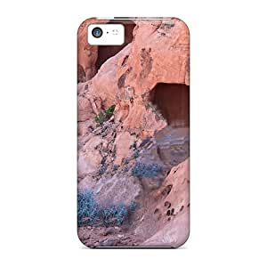 High-quality Durability Case For Iphone 5c(entrances)
