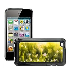 Negro Duro Carcasa Case//m0004887250mm Aero Bokeh Grass Macro//Apple iPod Touch 44G 4th