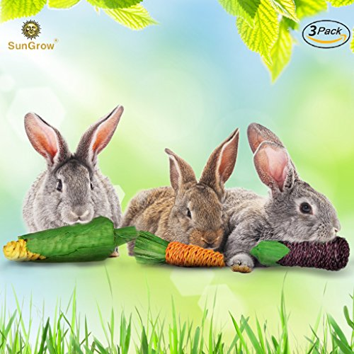 SunGrow Natural Veggie Chew Toys for Rabbits (3 pcs): Woven with 100% Organic Material: Stimulate your Bunny Rabbits: Bright, Entertaining and Safe for chewing (Clay Terracotta Is What)
