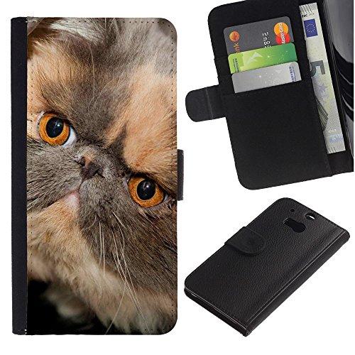 OMEGA Case / HTC One M8 / persian shorthair short muzzle cat / Cuero PU Delgado caso Billetera cubierta Shell Armor Funda Case Cover Wallet Credit Card