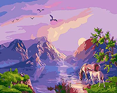 Pack of 20 [WOODEN FRAMED] Diy Oil Painting, paint By Number- Horse 16*20 inch