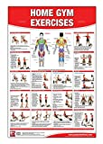 Home Gym Exercises Laminated Poster/Chart: Home Gym Chart, Home Gym Weight Lifting Routine, Weight Stack Gym Chart, BodySolid Gym Poster, Multi-Station Gym, Cable Gym, Pulley System Gym