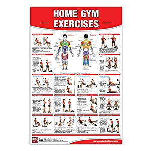 Home Gym Exercises Laminated Poster/Chart: Home Gym Chart, Home Gym Weight Lifting Routine, Weight Stack Gym Chart, BodySolid Gym Poster, … Selectorized Gym Poster, Exercises poster