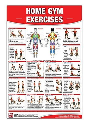 Everyday Exercises Diagram Data Wiring Diagrams