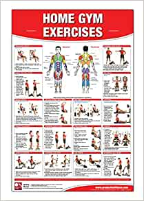 Home Gym Exercises Laminated Poster/Chart: Home Gym Chart ...