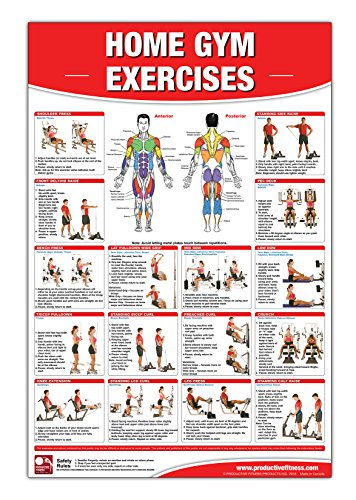 Home Gym Exercises Laminated Poster/Chart: Home Gym Chart, Home Gym Weight Lifting Routine, Weight Stack Gym Chart, BodySolid Gym Poster, Multi-Station Gym, Cable Gym, Pulley System Gym by Productive Fitness Products