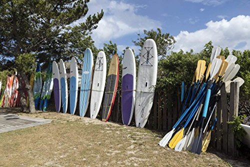 Photograph| Kayaks, windsurfer boards, and paddles at North Duck Watersports in Duck, a community named for the plethora of waterfowl in the area, in North Carolina's Outer Banks 44in x 30in
