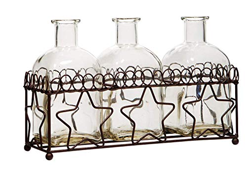 "Star Vintage Flower (Multi Vase Glass With Star Metal Rack For Home Office Decor Set of 3 Small Vases 5.5""H)"