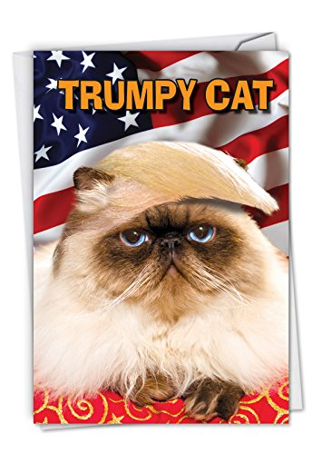 Trumpy Cat: Hilarious Birthday Card, with Envelope. C4658BDG