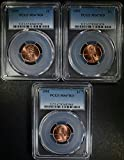 1995 Lincoln Cent Lot of (3) all PCGS Red MS-67