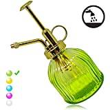 Plant Mister Flower Water Spray Bottle Can Pot | Vintage Pumpkin Style Decorative Glass Plant Atomizer Watering Can Pot with Top Pump for Indoor Potted Plants Terrariums Flowers (Green-Gold-S)