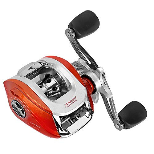 Carryberry Baitcasting Reel,Fishing Reels, Spinning Fishing Reel with Magnetic Braking System,12+1 Corrosion Resistant Bearings,Low Profile Baitcasting Fishing Reel for Saltwater or Freshwater