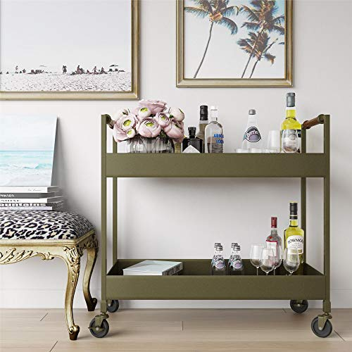 Carts Brass Serving - Novogratz Stella Bar Cart, Brass Finish, Leather